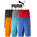 Puma Mens Tech Golf Shorts 2015