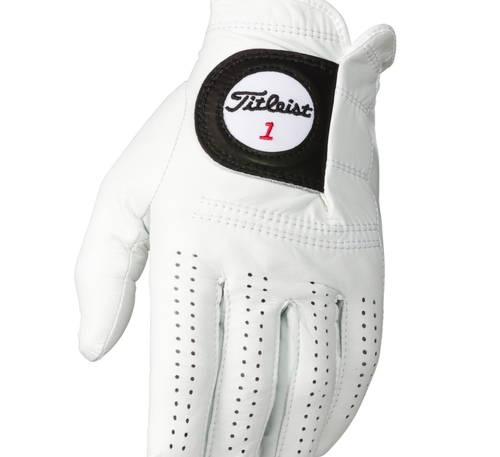 Titleist Players Golf Glove | Authorised Titleist Online ... | 500 x 457 jpeg 75kB